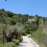 Jardin Botanico De Santa Catalina  | Mai 2010